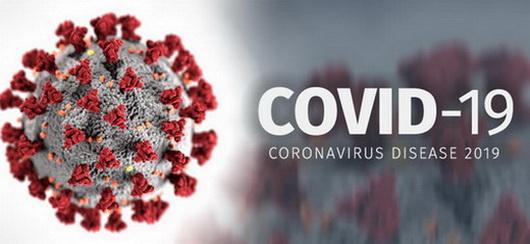 Covid-19-homepage